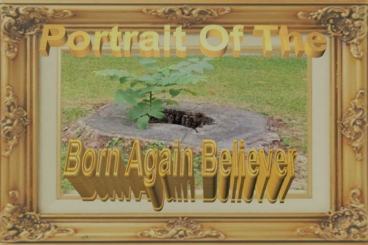 Portrait Of The Born Again Believer Pt. 41